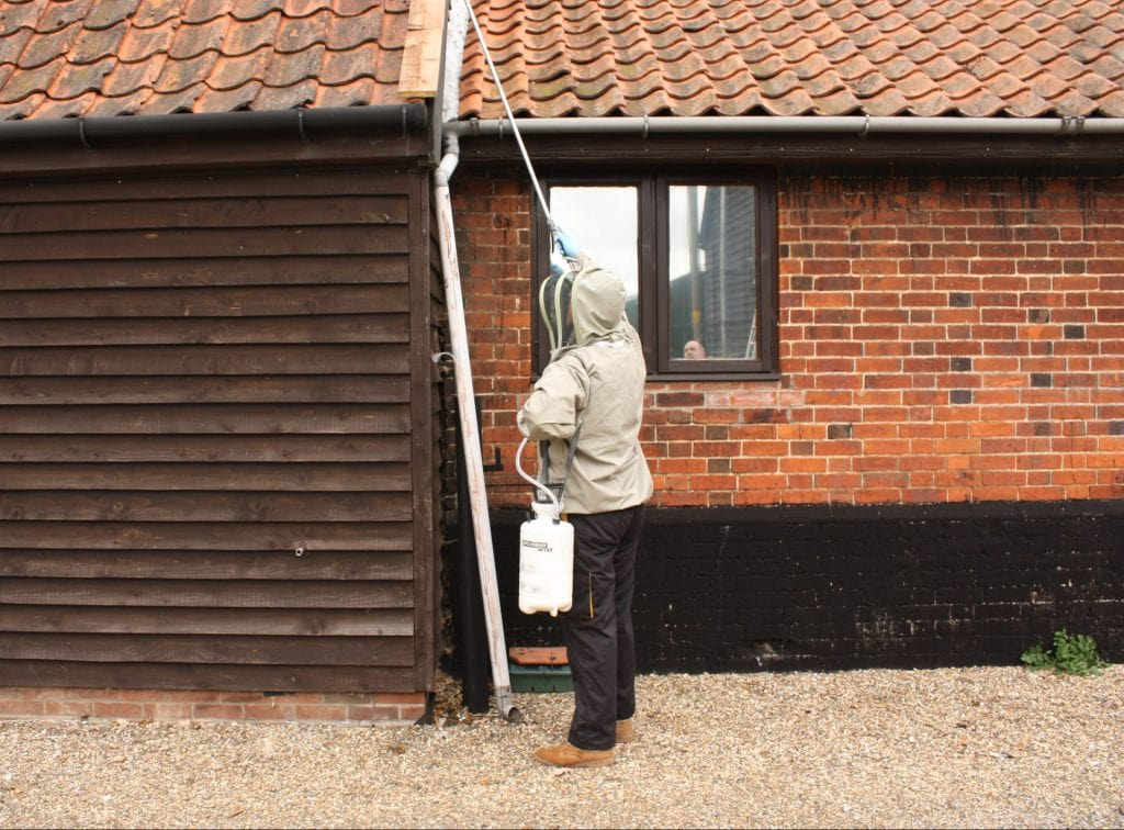 Domestic Pest Control Suffolk