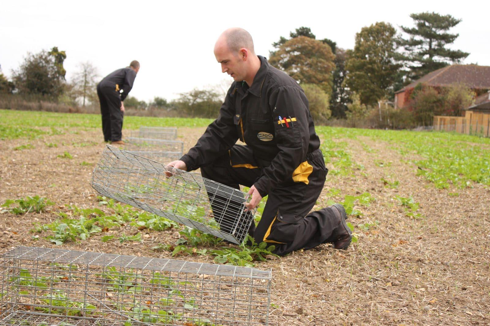 Wildlife Control Suffolk